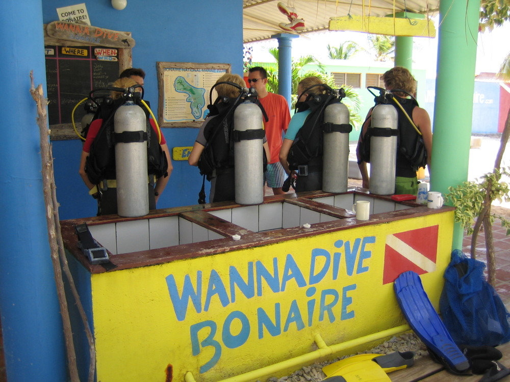 Know your abc 39 s bonaire magnificent escape - The dive hut bonaire ...