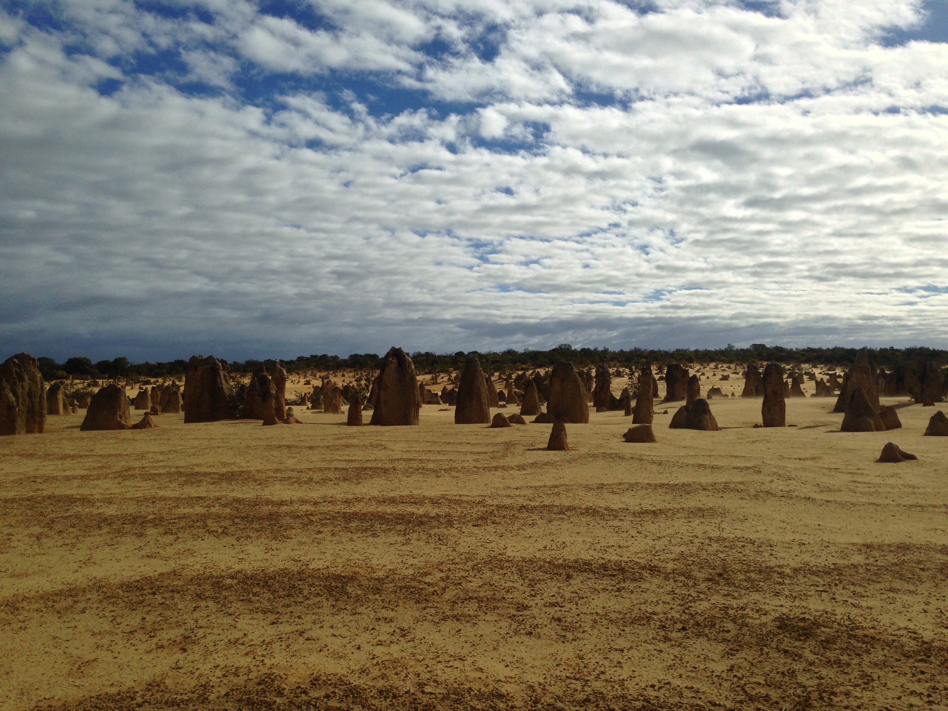 PInnacles10
