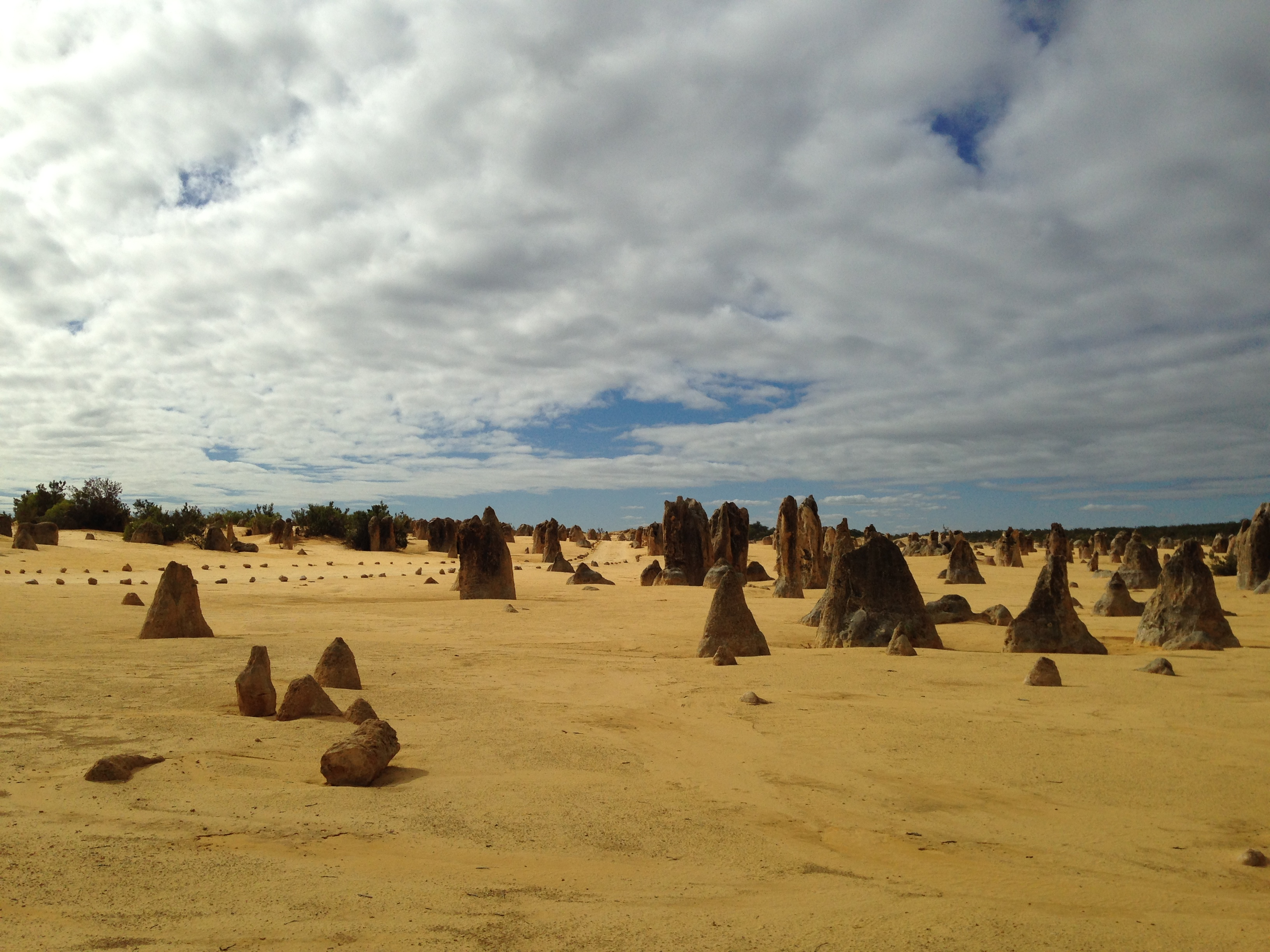 Pinnacles8