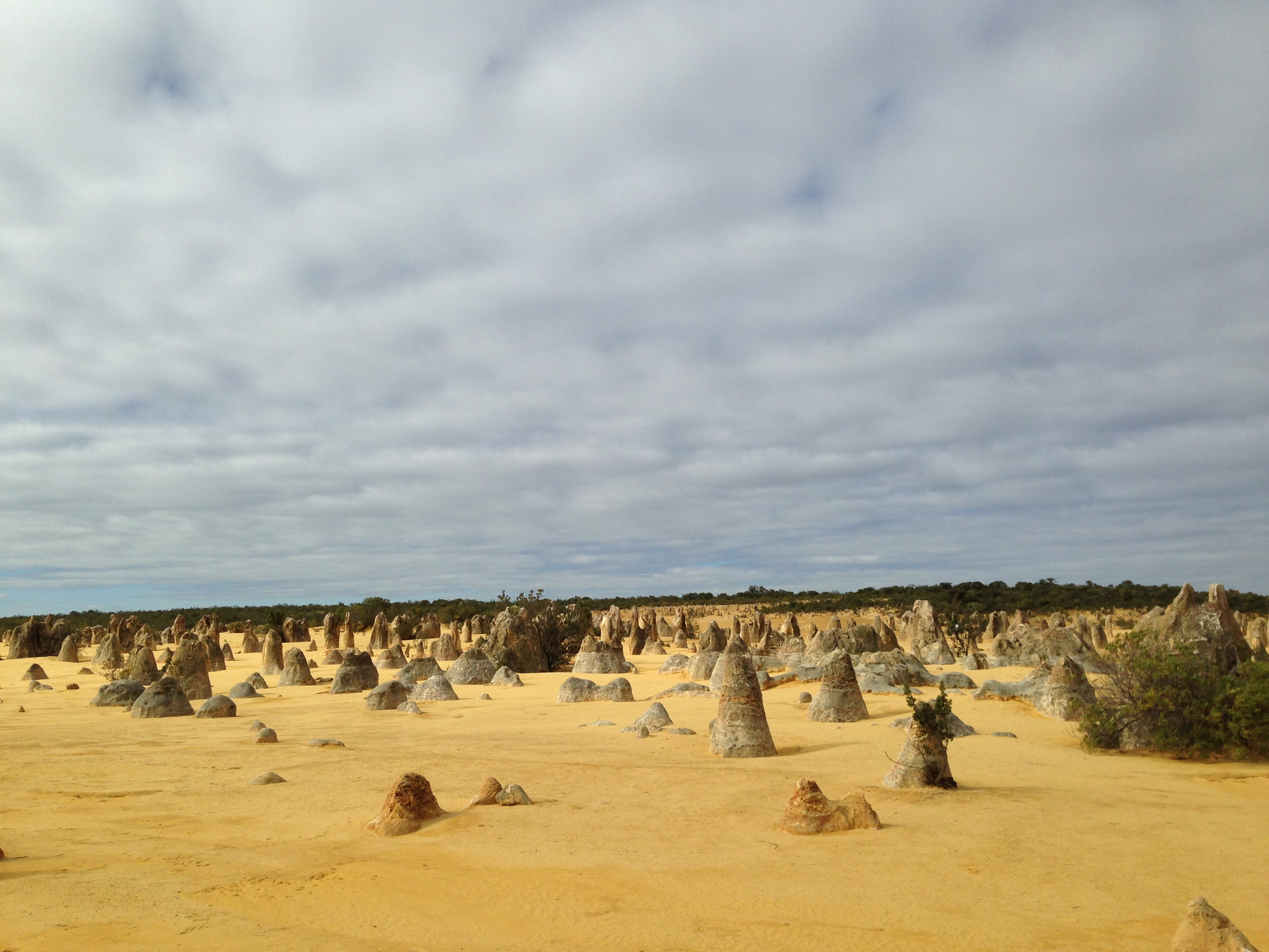 Pinnacles9